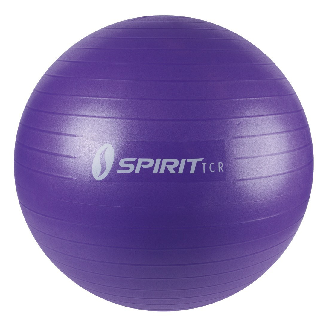 Buy Spirit Exercise Ball Ø 65cm - gym ball for workouts, Pilates, sitting, gymnastics, up to 136 ...